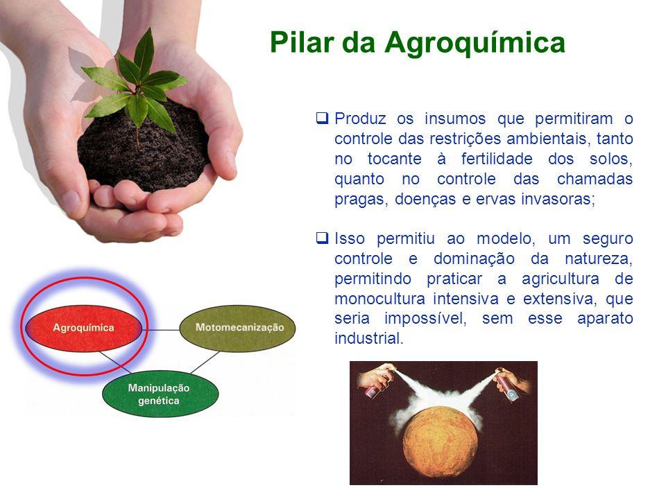 Pilar da Agroquímica