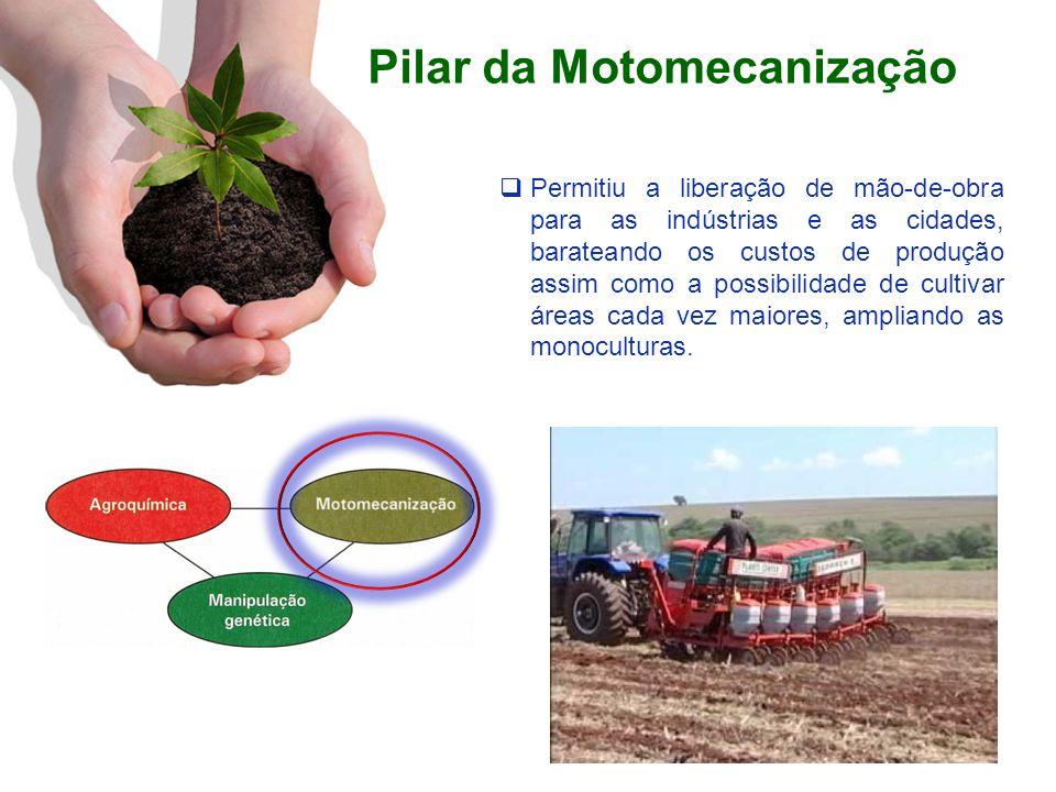 Pilar da Motomecanização