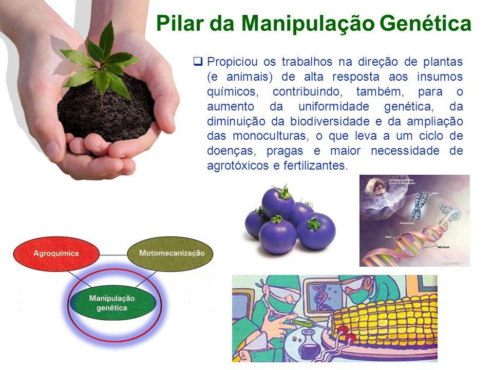 Pilar da Manipulação Genética