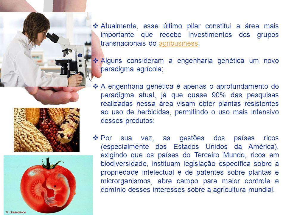 Atualmente, esse último pilar constitui a área mais importante que recebe investimentos dos grupos transnacionais do agribusiness;