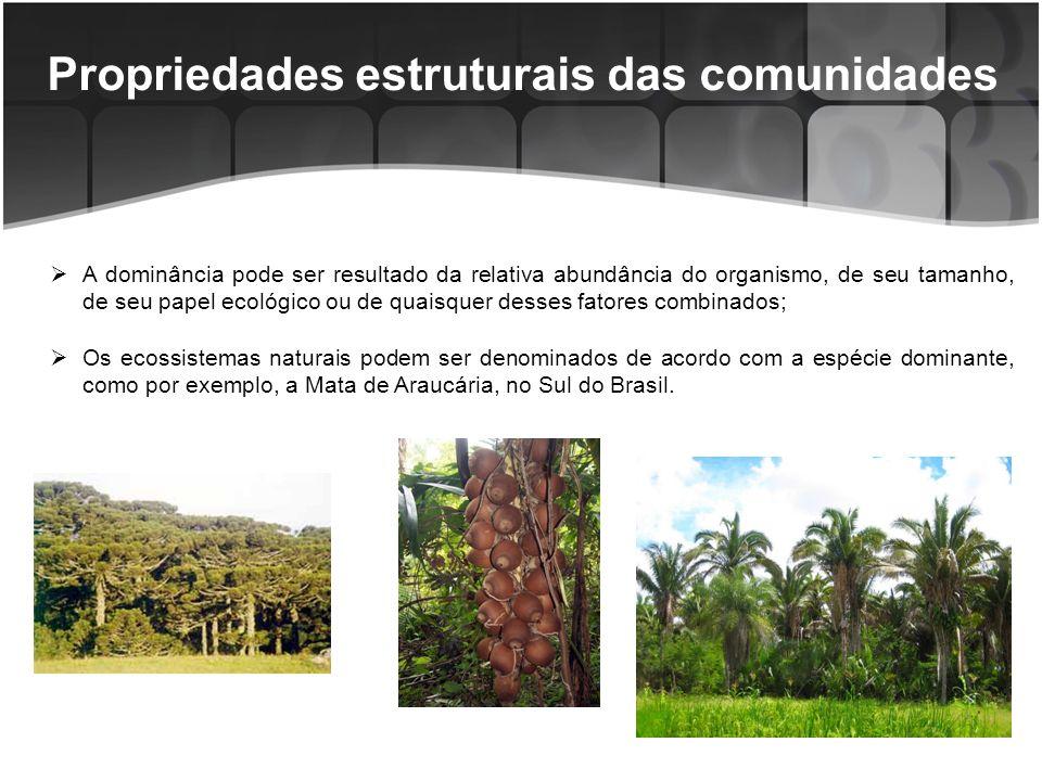 Propriedades estruturais das comunidades