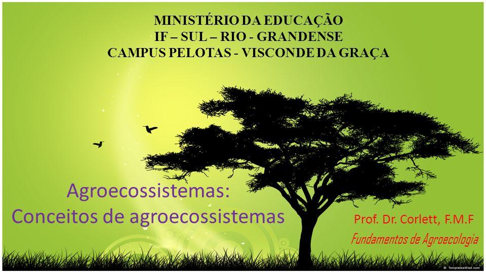 Agroecossistemas: Conceitos de agroecossistemas