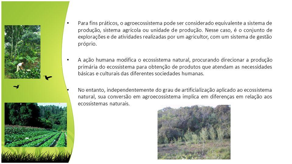Para fins práticos, o agroecossistema pode ser considerado equivalente a sistema de produção, sistema agrícola ou unidade de produção. Nesse caso, é o conjunto de explorações e de atividades realizadas por um agricultor, com um sistema de gestão próprio.