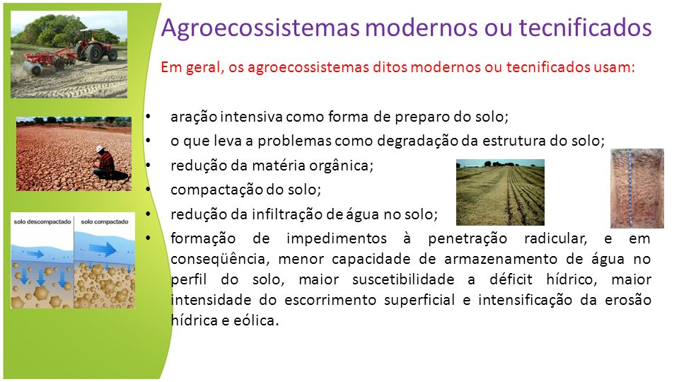 Agroecossistemas modernos ou tecnificados