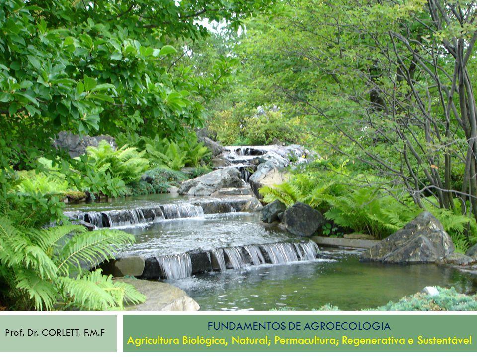 Fundamentos de Agroecologia Agricultura Biológica, Natural; Permacultura; Regenerativa e Sustentável