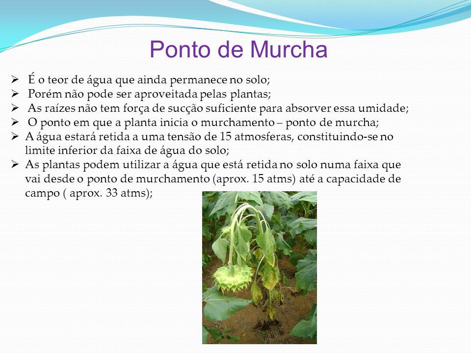 Ponto de Murcha É o teor de água que ainda permanece no solo;