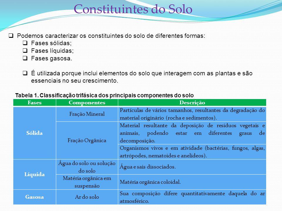 Constituintes do Solo Podemos caracterizar os constituintes do solo de diferentes formas: Fases sólidas;