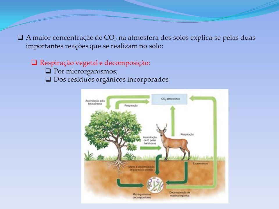 A maior concentração de CO2 na atmosfera dos solos explica-se pelas duas importantes reações que se realizam no solo: