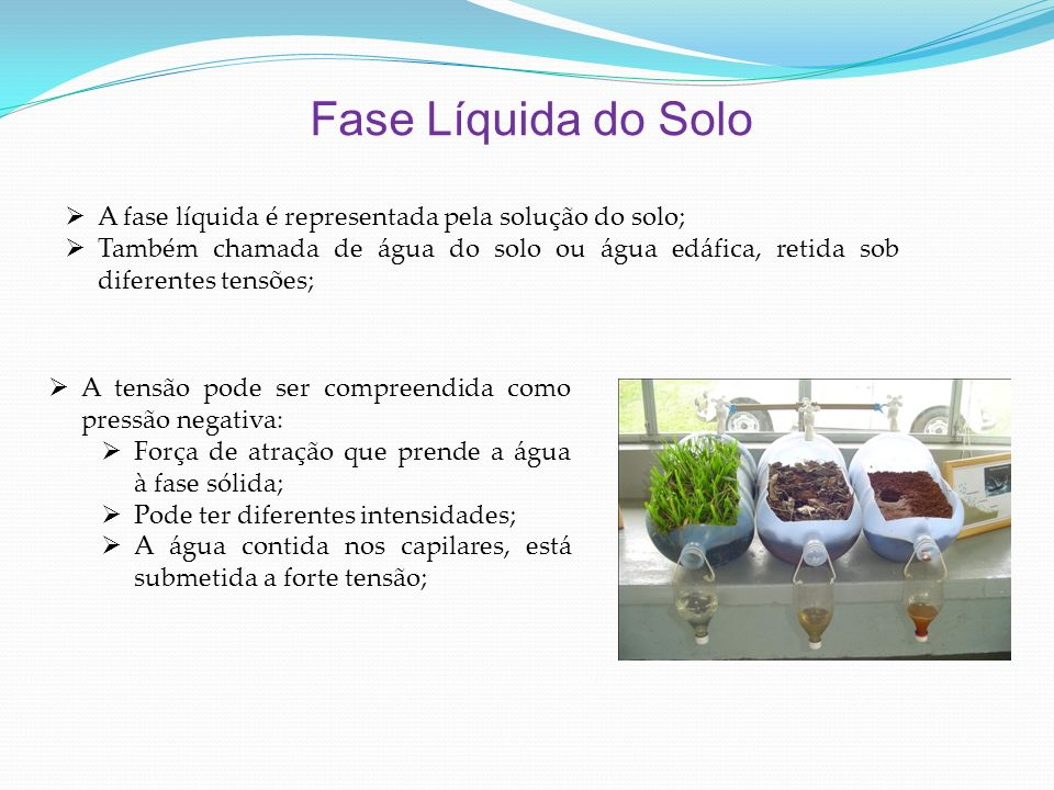 Fase Líquida do Solo A fase líquida é representada pela solução do solo;