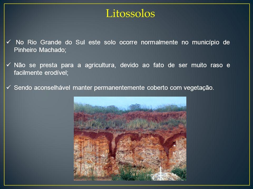 Litossolos No Rio Grande do Sul este solo ocorre normalmente no município de Pinheiro Machado;