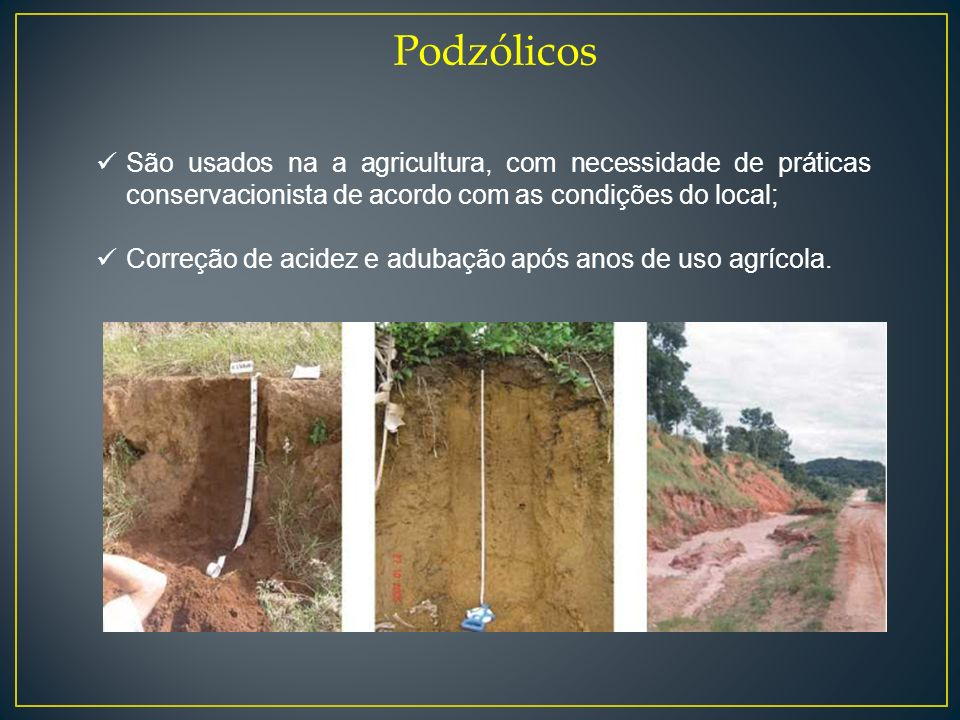 Podzólicos São usados na a agricultura, com necessidade de práticas conservacionista de acordo com as condições do local;