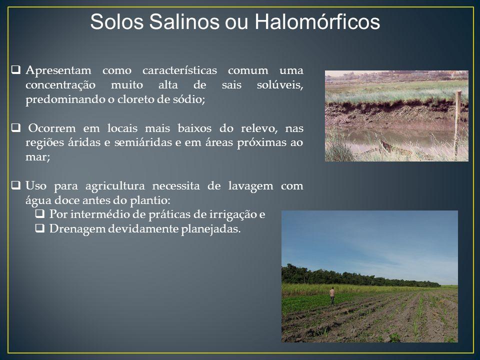 Solos Salinos ou Halomórficos
