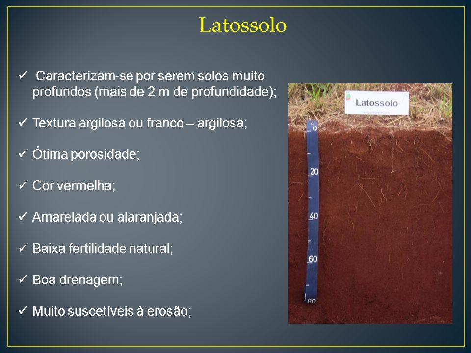 Latossolo Caracterizam-se por serem solos muito profundos (mais de 2 m de profundidade); Textura argilosa ou franco – argilosa;