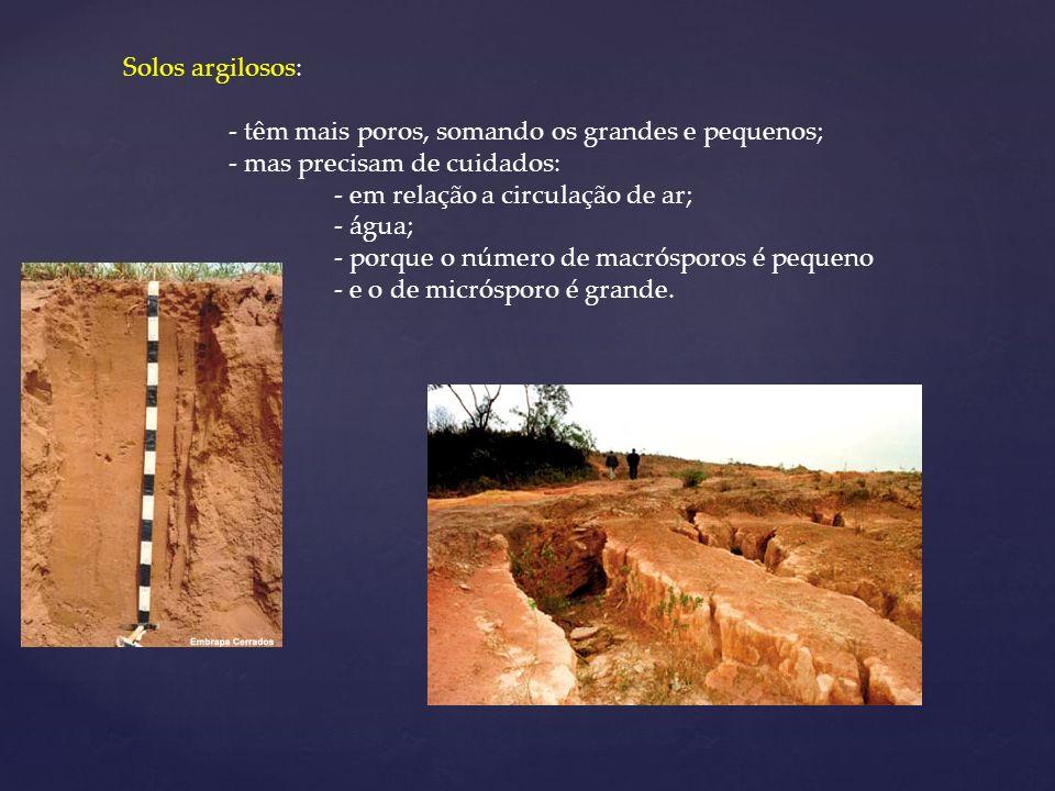 Solos argilosos: - têm mais poros, somando os grandes e pequenos; - mas precisam de cuidados: - em relação a circulação de ar;