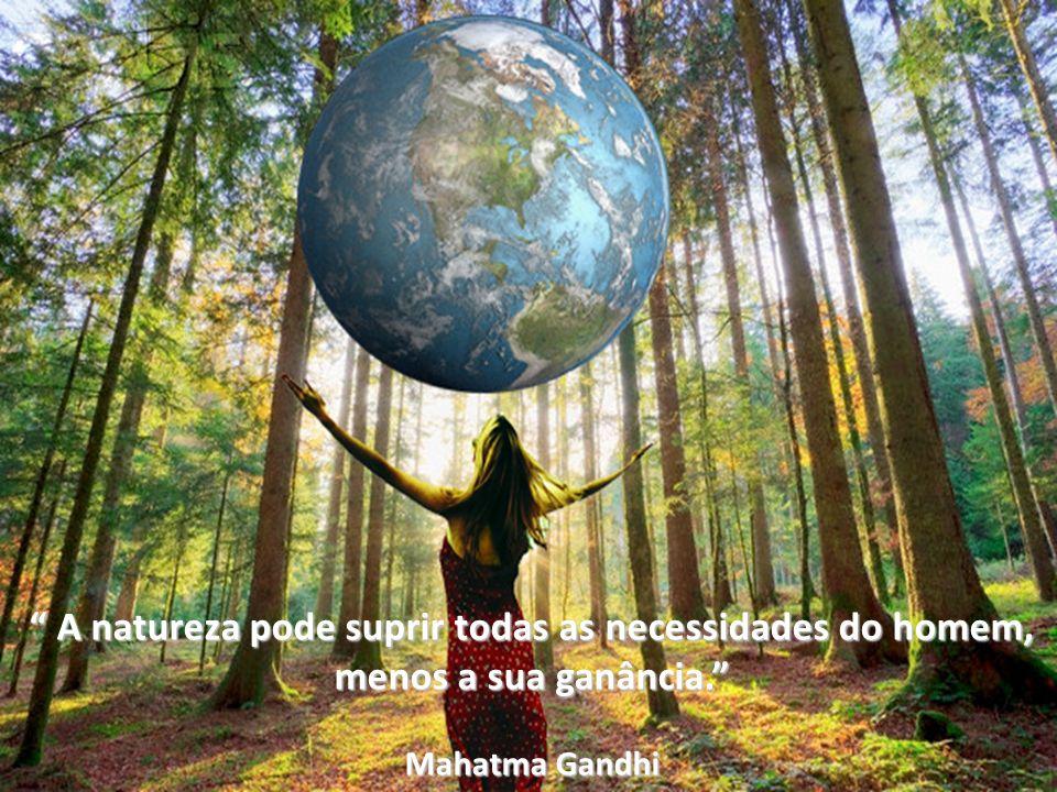 A natureza pode suprir todas as necessidades do homem,