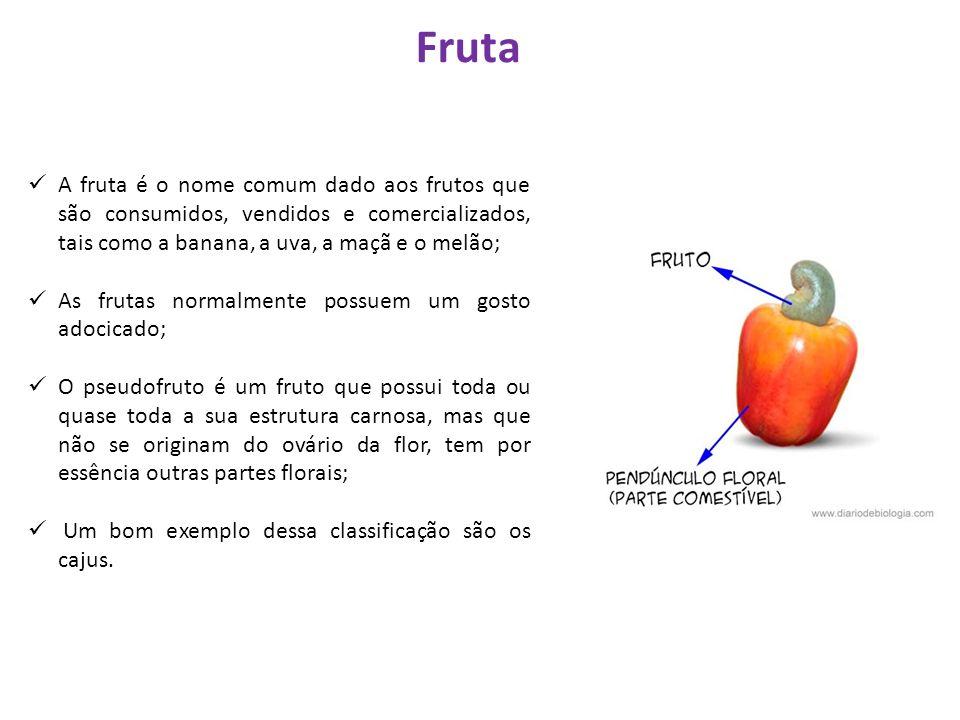 Fruta A fruta é o nome comum dado aos frutos que são consumidos, vendidos e comercializados, tais como a banana, a uva, a maçã e o melão;