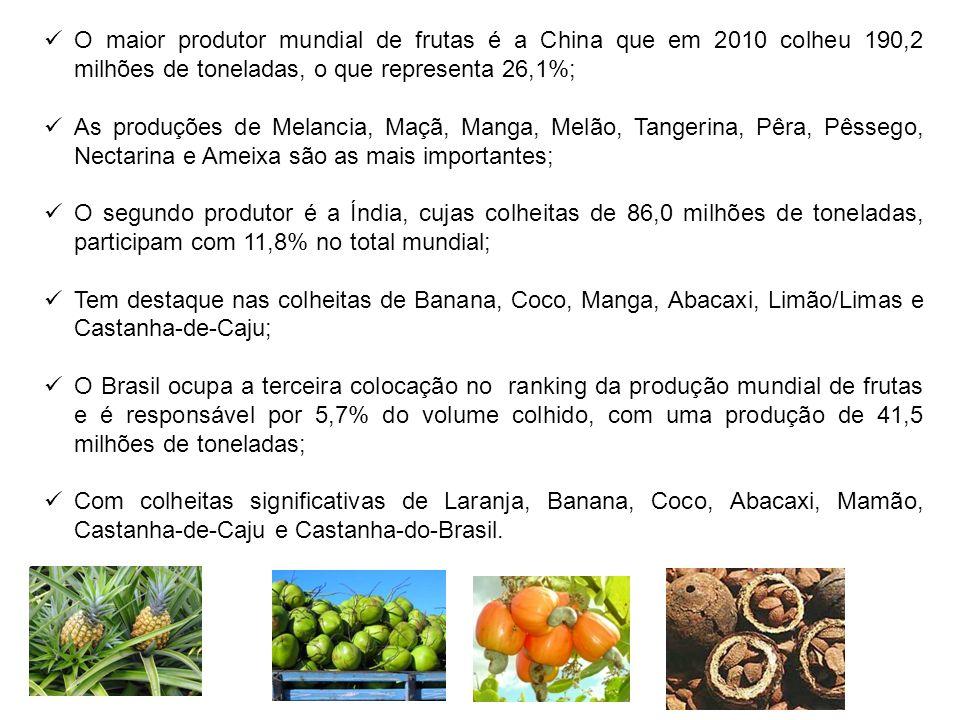 O maior produtor mundial de frutas é a China que em 2010 colheu 190,2 milhões de toneladas, o que representa 26,1%;