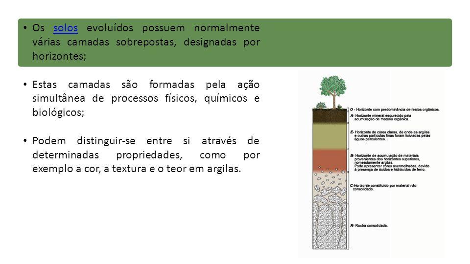 Os solos evoluídos possuem normalmente várias camadas sobrepostas, designadas por horizontes;