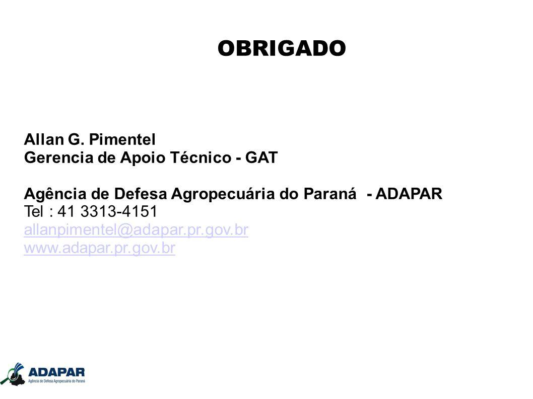 OBRIGADO Allan G. Pimentel Gerencia de Apoio Técnico - GAT