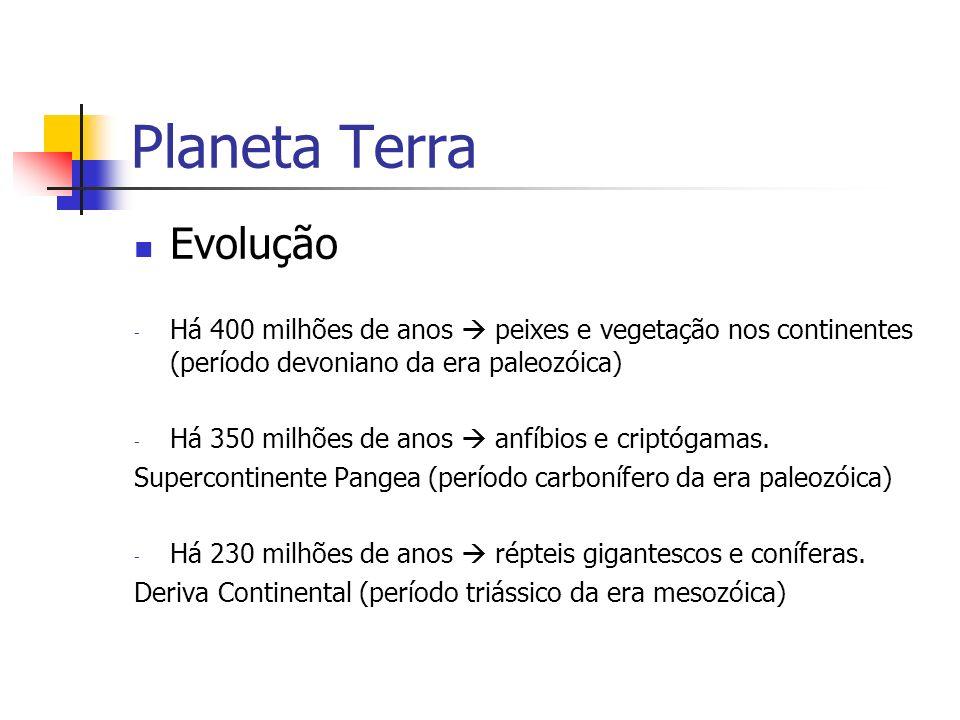 Planeta Terra Evolução