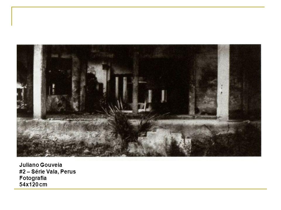 Juliano Gouveia #2 – Série Vala, Perus Fotografia 54x120 cm