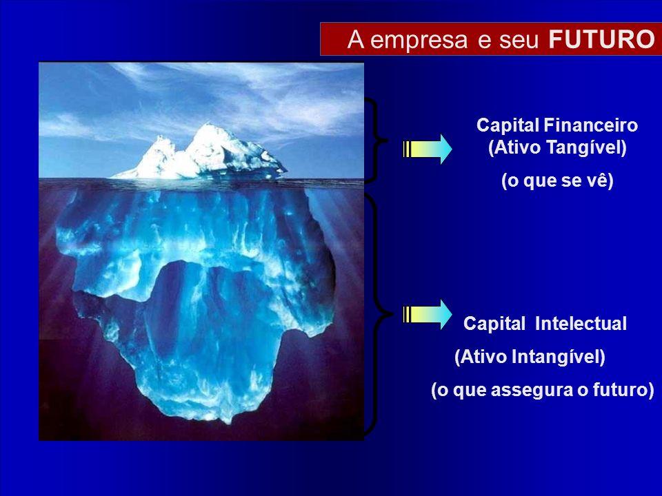 Capital Financeiro (Ativo Tangível) (o que assegura o futuro)