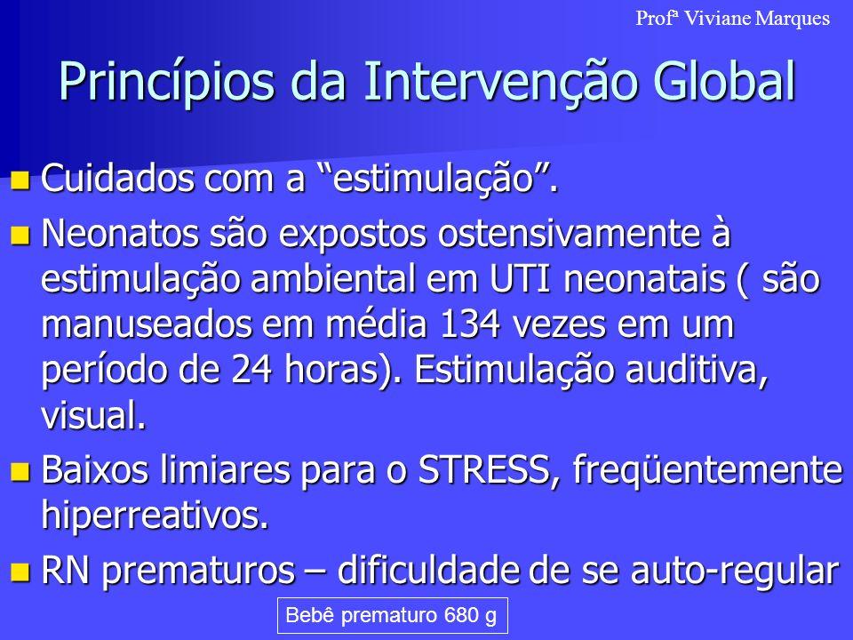 Princípios da Intervenção Global