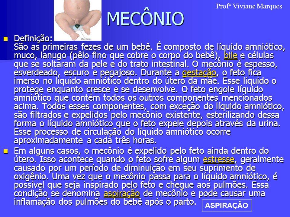 MECÔNIO Profª Viviane Marques.