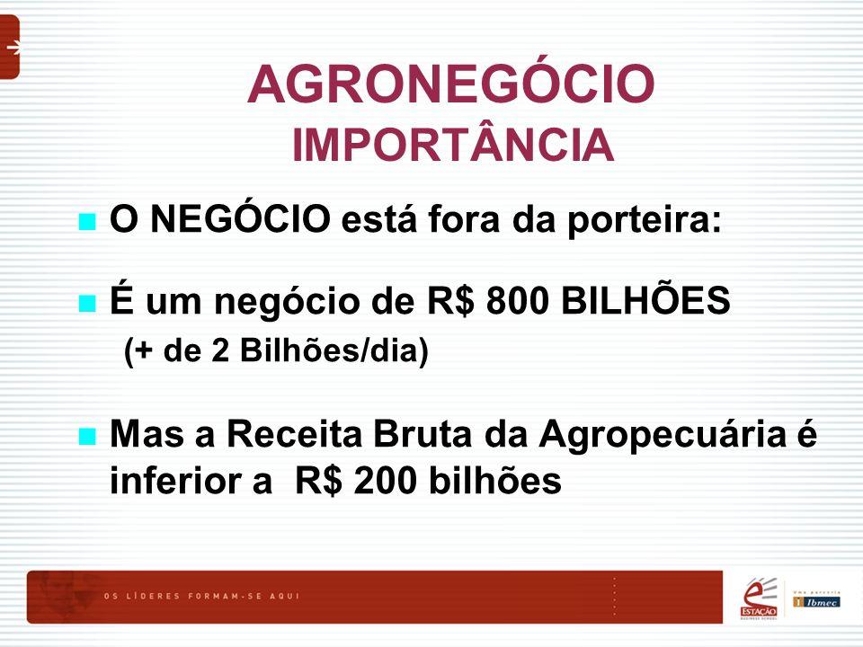 AGRONEGÓCIO IMPORTÂNCIA