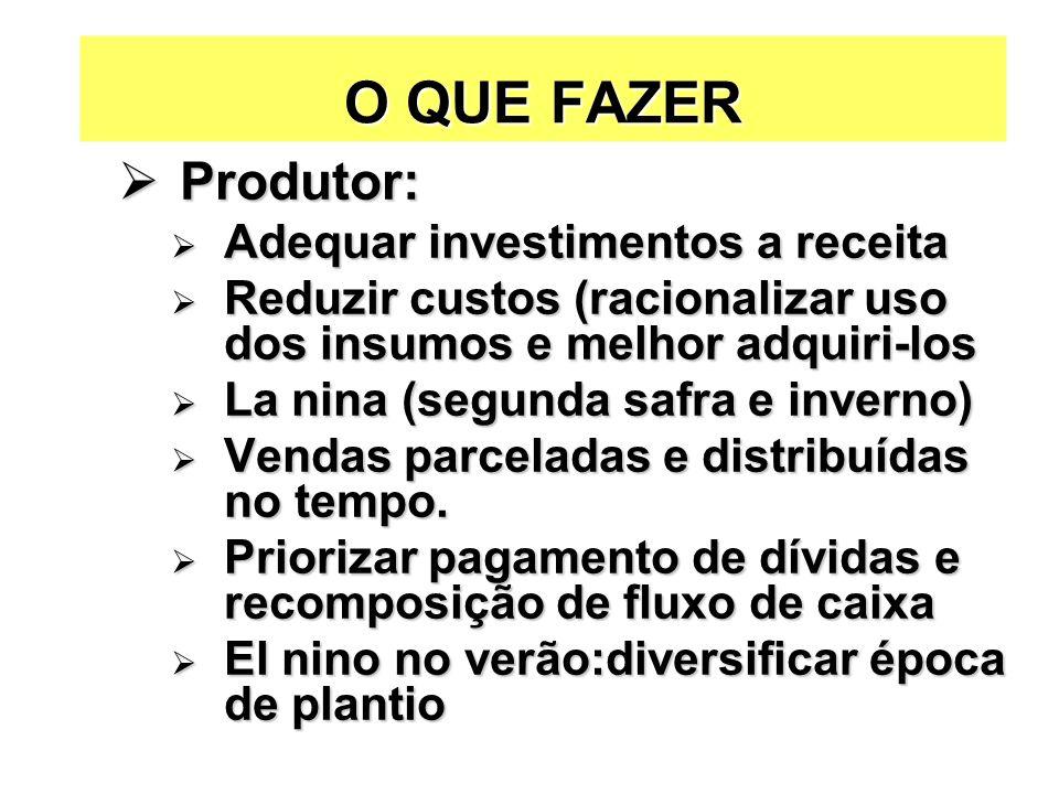 O QUE FAZER Produtor: Adequar investimentos a receita