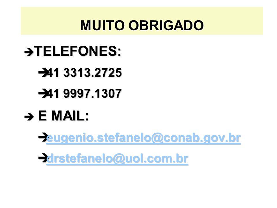 MUITO OBRIGADO TELEFONES: E MAIL: 41 3313.2725 41 9997.1307