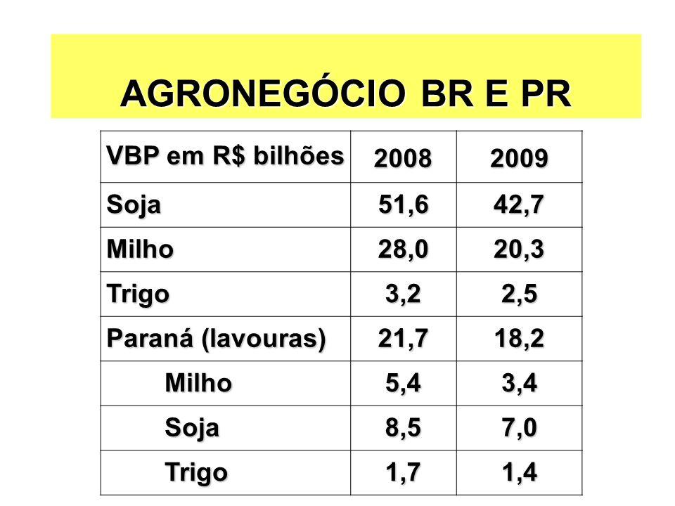 AGRONEGÓCIO BR E PR VBP em R$ bilhões 2008 2009 Soja 51,6 42,7 Milho