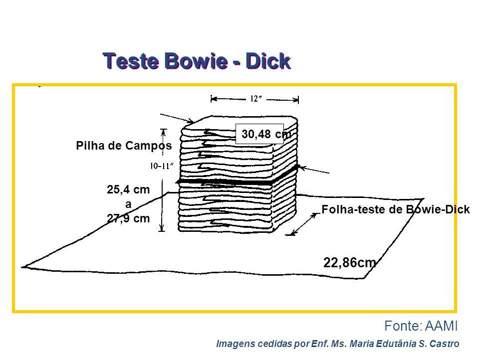 Folha-teste de Bowie-Dick