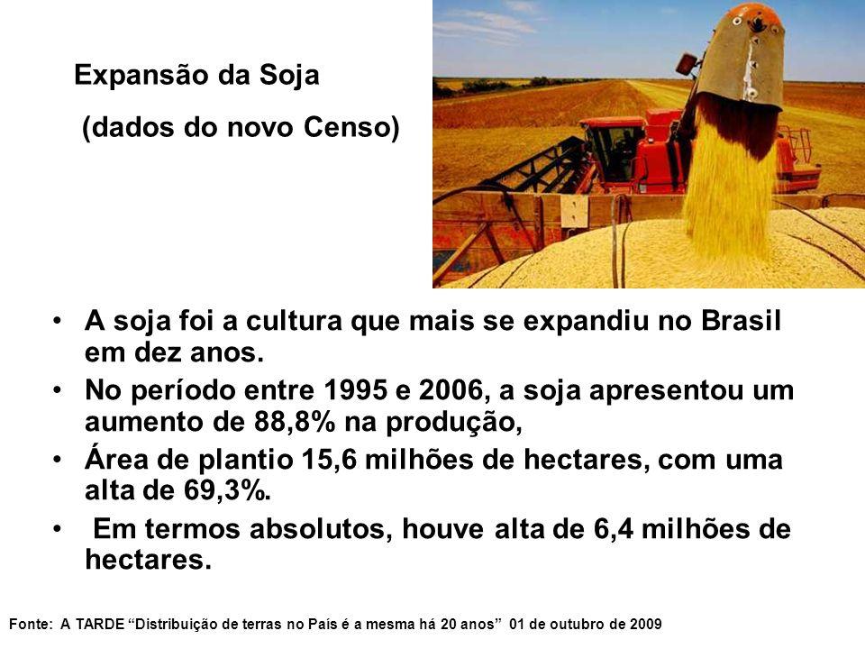 A soja foi a cultura que mais se expandiu no Brasil em dez anos.
