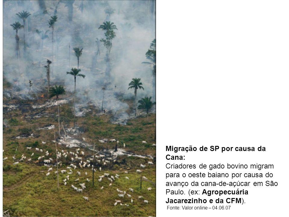 Migração de SP por causa da Cana: