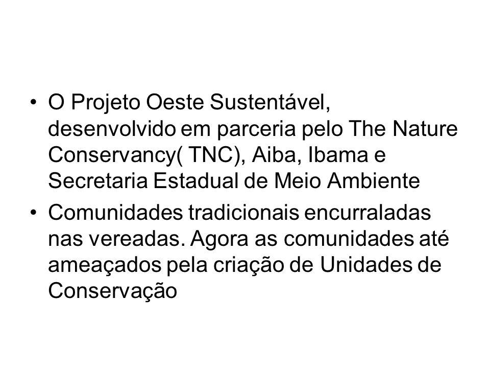 O Projeto Oeste Sustentável, desenvolvido em parceria pelo The Nature Conservancy( TNC), Aiba, Ibama e Secretaria Estadual de Meio Ambiente