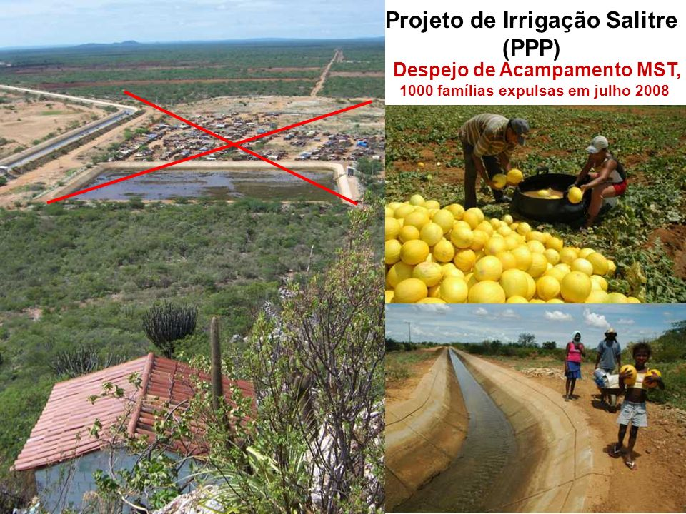 Projeto de Irrigação Salitre (PPP)