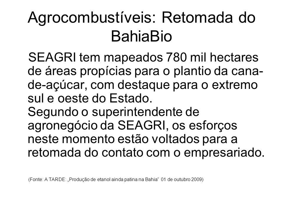 Agrocombustíveis: Retomada do BahiaBio