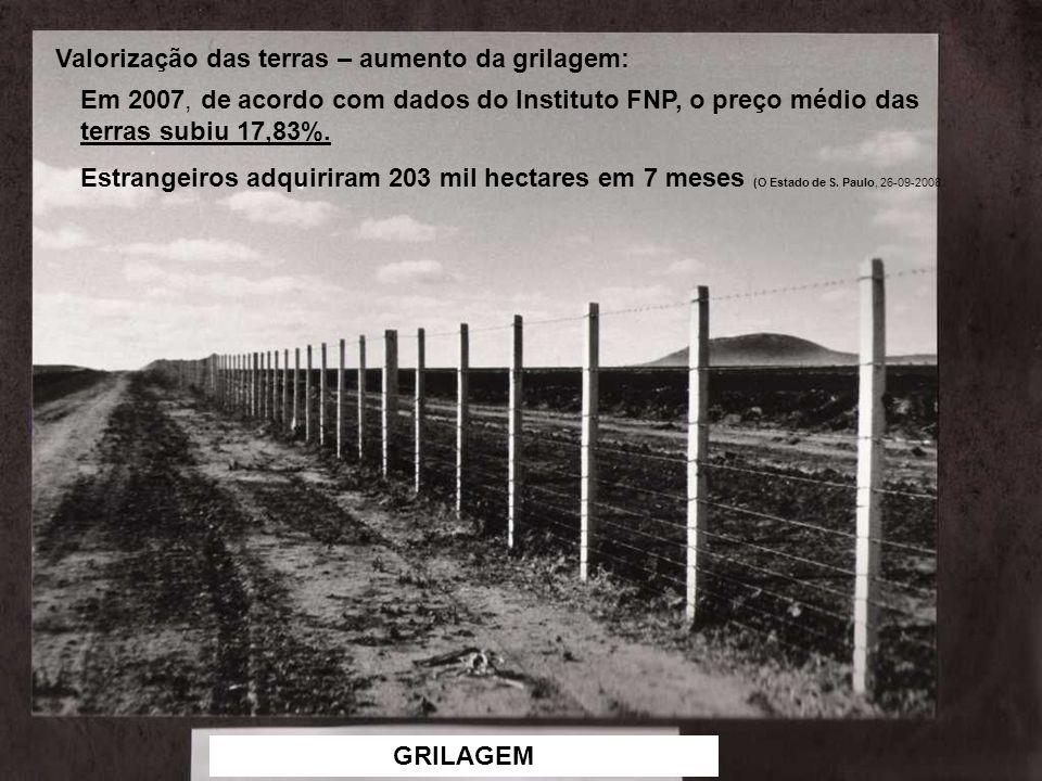 Valorização das terras – aumento da grilagem: