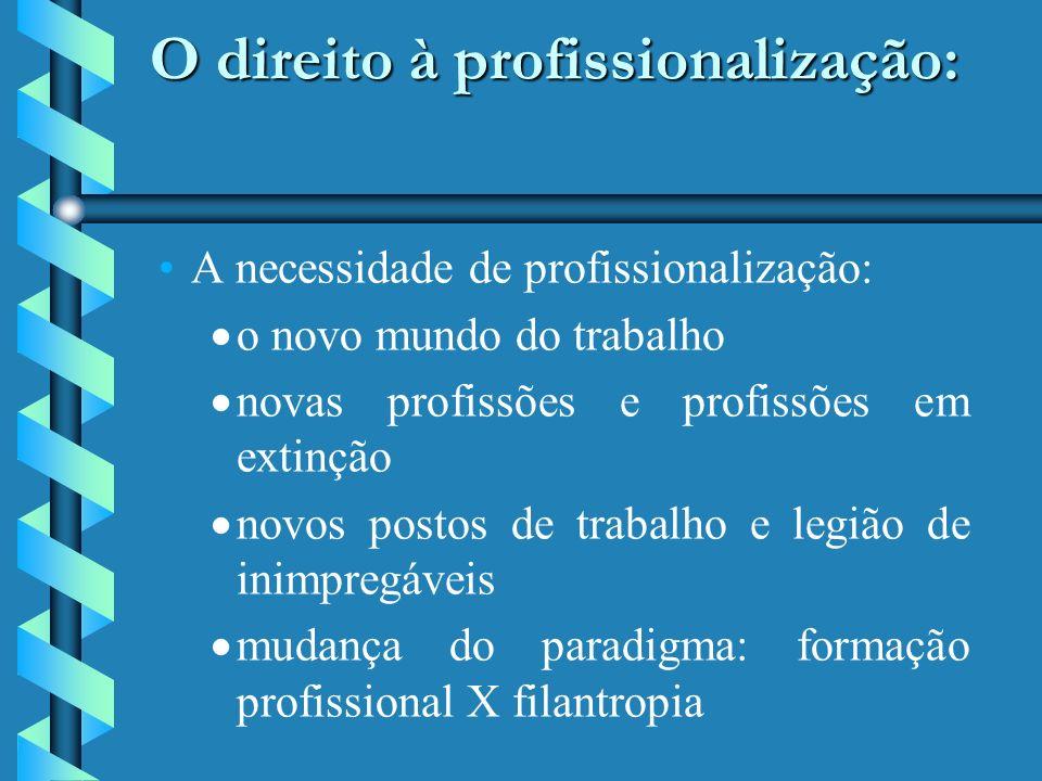 O direito à profissionalização: