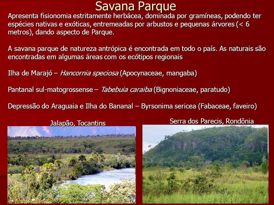Savana Parque