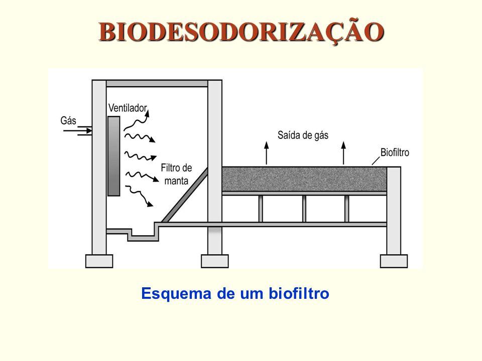 Esquema de um biofiltro