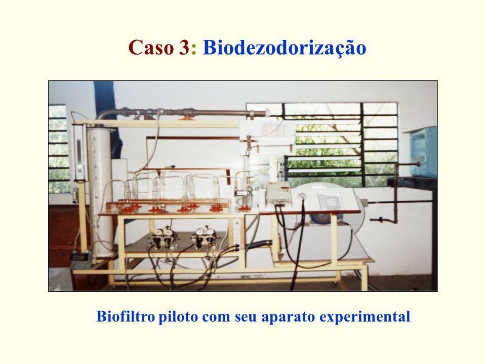 Caso 3: Biodezodorização