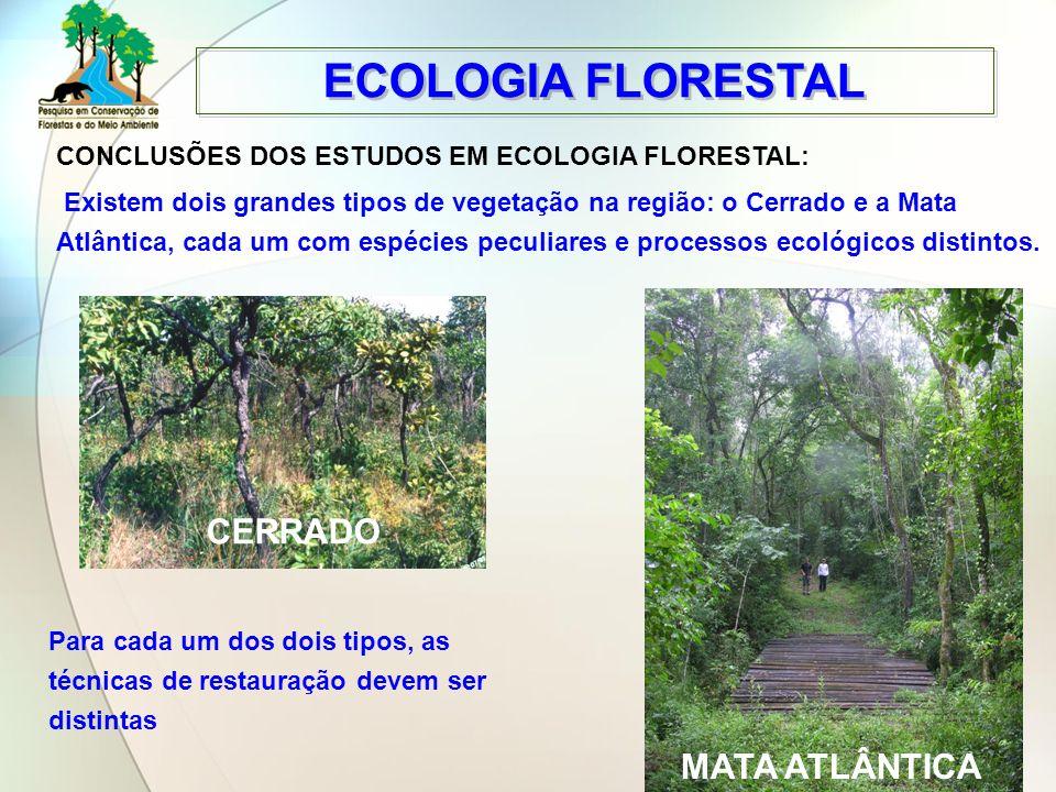 ECOLOGIA FLORESTAL CERRADO MATA ATLÂNTICA