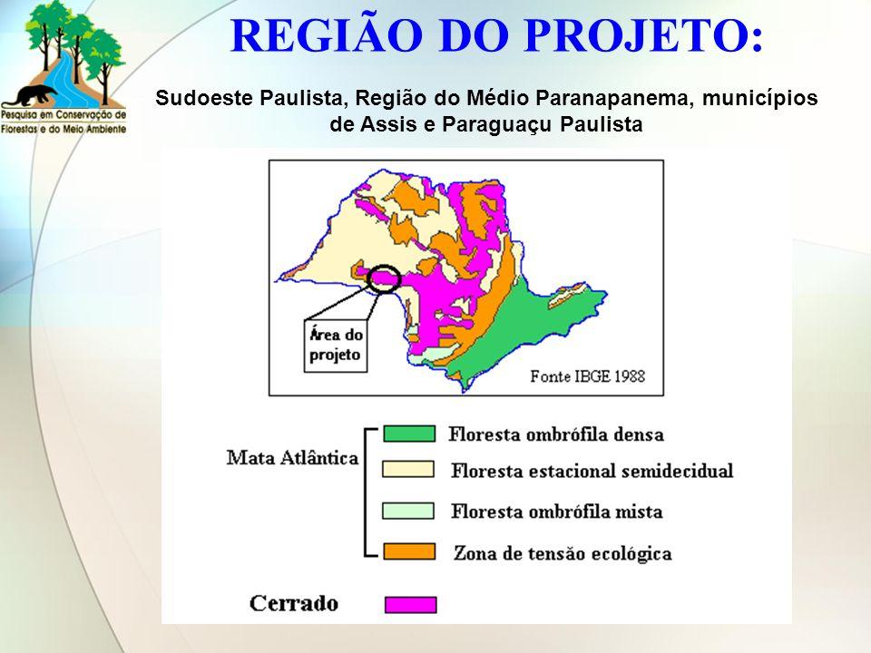 REGIÃO DO PROJETO: Sudoeste Paulista, Região do Médio Paranapanema, municípios de Assis e Paraguaçu Paulista.