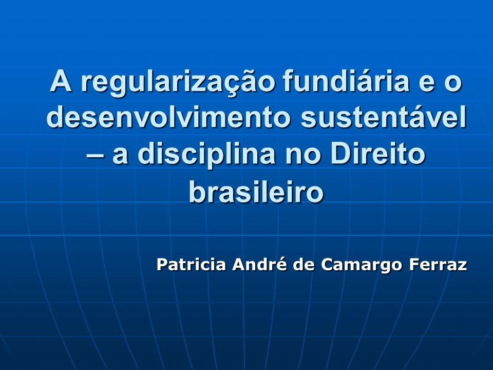 Patricia André de Camargo Ferraz