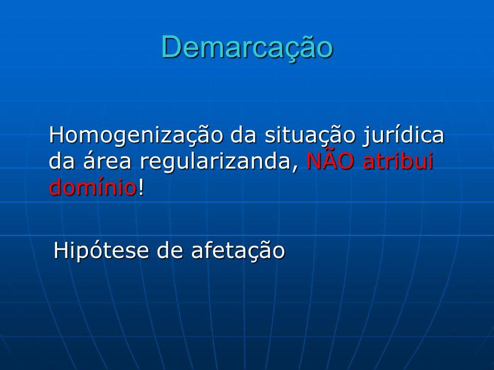 DemarcaçãoHomogenização da situação jurídica da área regularizanda, NÃO atribui domínio.