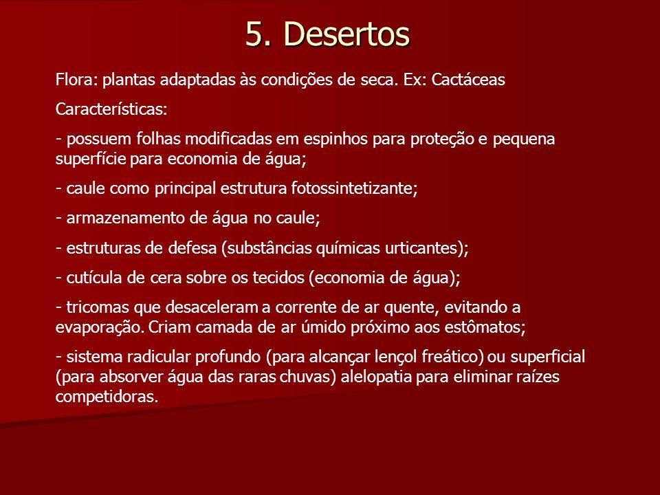 5. Desertos Flora: plantas adaptadas às condições de seca. Ex: Cactáceas. Características: