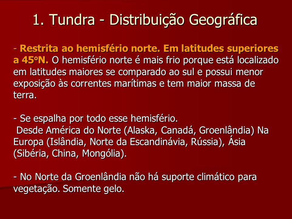 1. Tundra - Distribuição Geográfica