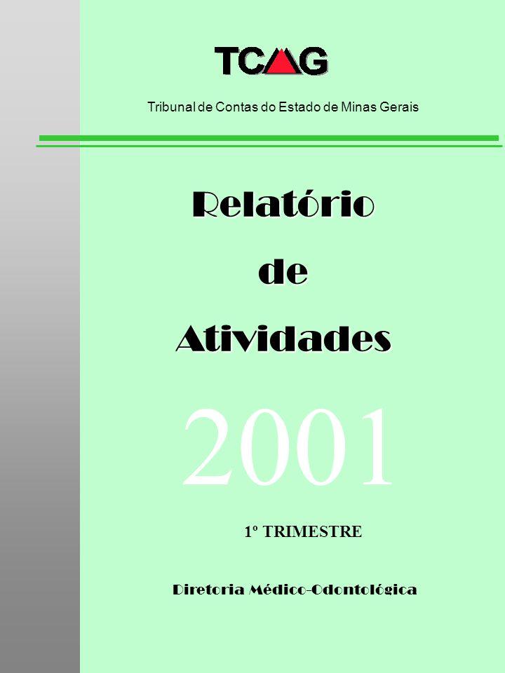 2001 Relatório de Atividades 1º TRIMESTRE